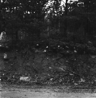 dating site skogstorp