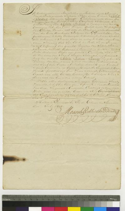 Certificate of Solomon Gompertz as shochet and bodek
