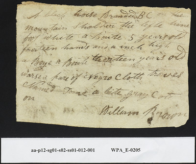 William Brown Regarding Horse and Slave Theft William Brown, May 1799