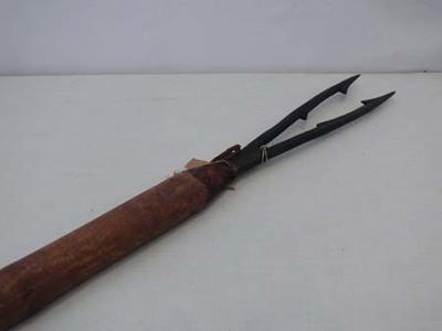 Speer/harpoen 2-tandig