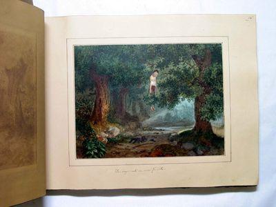 Un impiccato in una foresta