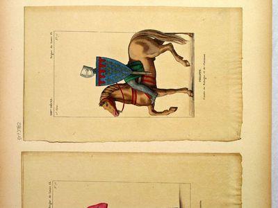 Philippe, Comte de Bologne et de Clermont  (XIIIme siècle - Règne de Louis IX)