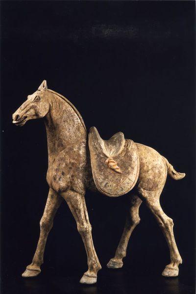 Cavallo sellato