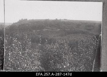 Maastik Vašina Gora ümbruses 1919. aasta kevadel.