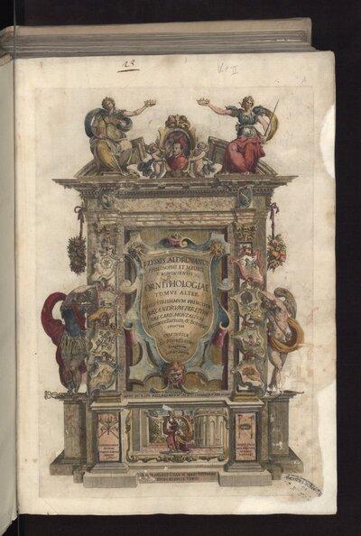 Ornithologiae tomus alter...cum indice copiosissimo variarum linguarum