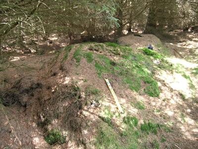 Dour Hill Long Cairn c