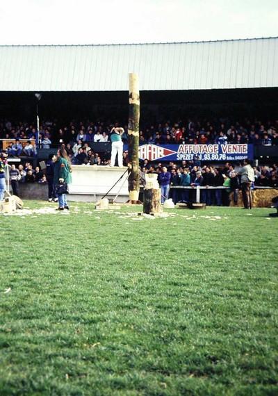 Corte de Troncos (opstaande stam) AIZKOLARIS. Carhaix, Jeux et Sports Traditionnels de Bretagne