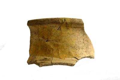 Rand van schenkkan in Andenne witbakkend aardewerk.
