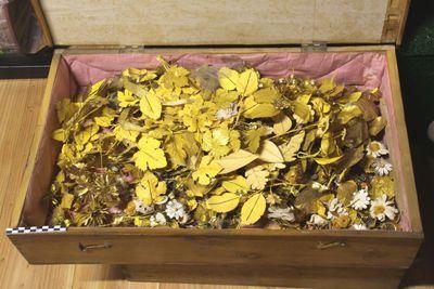 kist met ornamenten, oa vergulde bloemen- en druivenranken