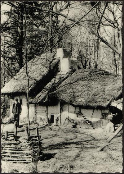 Kelderhut, naar een verdwenen voorbeeld uit Koersel