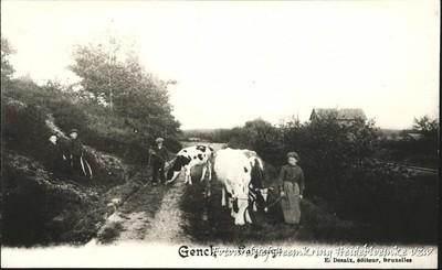 Genck - Paysage