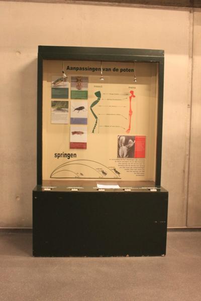 Mobiele museumkast: aanpassing van de poten.
