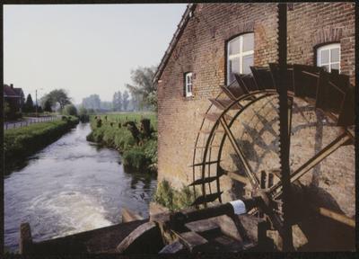 Alken. Nieuwe molen. De nieuwe molen of Ter Koestermolen, gelegen op de nieuwe Herk, dateert reeds van voor 1775. Het huidige gebouwencomplex werd opgetrokken ca. 1845. De watergraanmolen van het onderslagtype, waar het water onderaan tegen het rad stuwt, is nog steeds maalvaardig