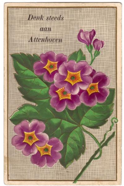 Fantasieprentkaart met bloemen 'Denk steeds aan Attenhoven'