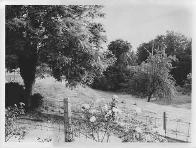 Landschap in Herfelingen