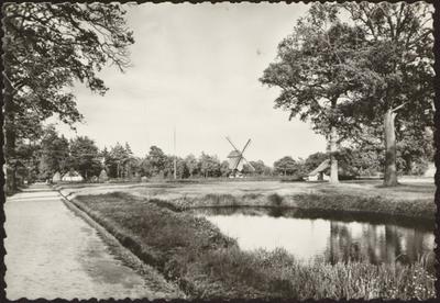 Domein Bokrijk. Openluchtmuseum. Kempisch dorpsplein met drenkplaats voor het vee, en standerdmolen uit Mol-Millegem, 1788