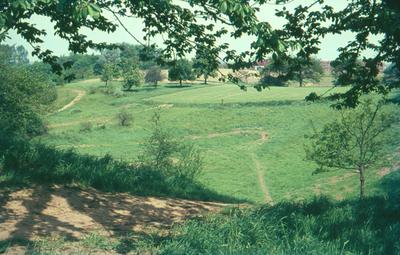 Landschap in Dilbeek