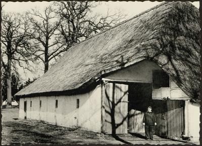 Grote Kempische schuur, met langs gerichte dorsvloer en schaapskooi, uit Olen 1789. Gift van het gemeentebestuur Olen en de T.C.B