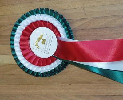 Roset paardensport van ruitster Karin Donckers 'Vlaams feest van de paardensport'