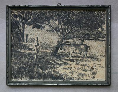 Koe met boomgaard te Alsemberg