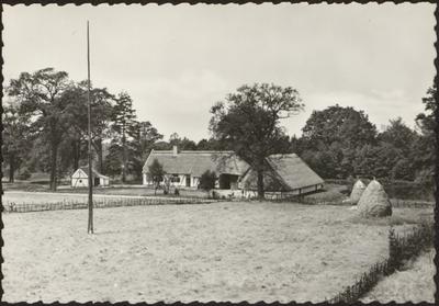 Domein Bokrijk. Openluchtmuseum. Grote Kempische hoeve uit Meeuwen, genoemd Kilbershoeve. Gilft van de Belgische Boerenbond, 1959