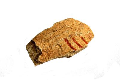 Fragment van kook- en drinkpotje.