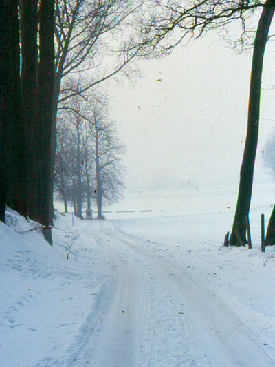 Landschap in Eizeringen