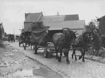 Foto Attenhoven met huifkarren op bedevaart naar Scherpenheuvel