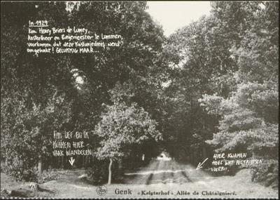 Kastanjedraaf (Kelchterhoef), Houthalen-Helchteren De Mijnstreek kent tal van unieke monumenten en landschappen…