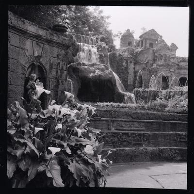 Servizio fotografico Tivoli, 1963-1961
