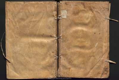 Comparatio grammaticae Hebraicae & Aramicae atque adeò dialectorum Aramicarum inter se [Texto impreso]