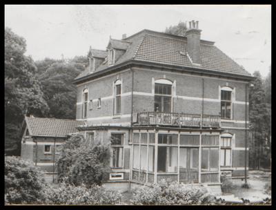 Pleines, de oprichter van de vroegere Koninklijke Zeepfabriek De Duif  te Den Dolder, liet destijds voor zijn personeel woningen en een villa voor zichzelf bouwen. De villa van Pleines aan de Dolderseweg tussen de Pleineslaan en de Willem Arntszlaan werd, in 1962, afgebroken om plaats te maken voor een neiuwe weg.