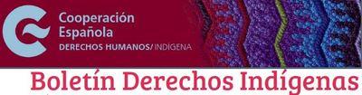 Boletín derechos indígenas