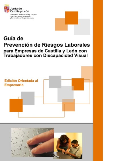 Guía de prevención de riesgos laborales para empresas de la comunidad de Castilla y León con trabajadores con discapacidad visual : edición orientada al empresario