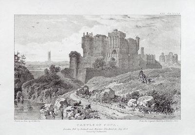 Castle of Coca [Material gráfico]
