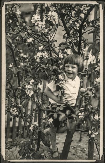 Portret dziecka stojącego na gałęzi kwitnącej śliwy