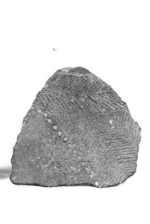 Fragment de ceràmica del eneolític.