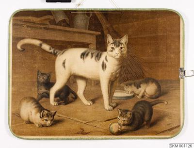 plansch, skolplansch, Katt med källingar