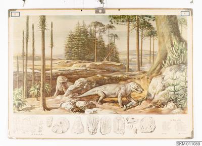 skolplansch, plansch, Trias - Brokig sandsten. Urkräldjur