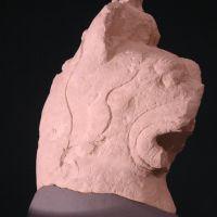 Cabeza de grifo. Conjunto escultórico de Cerrillo Blanco (Porcuna, Jaén, España)