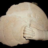 Caetra asida por mano. Conjunto escultórico de Cerrillo Blanco (Porcuna, Jaén, España)