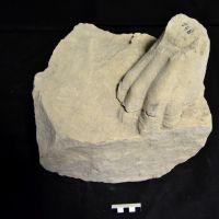 Fragmento E23. Conjunto escultórico de Cerrillo Blanco (Porcuna, Jaén, España)