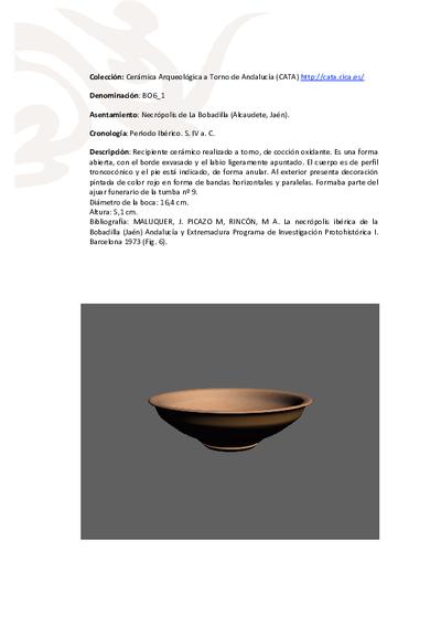 3D PDF de BO6_1. Recipiente cerámico procedente de la necrópolis ibérica de La Bobadilla (Alcaudete, Jaén)