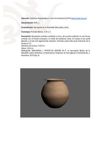 3D PDF de BO9_1. Recipiente cerámico procedente de la necrópolis ibérica de La Bobadilla (Alcaudete, Jaén)