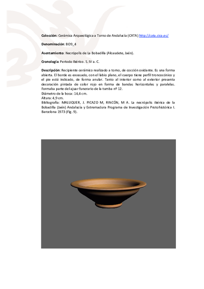 3D PDF de BO9_4. Recipiente cerámico procedente de la necrópolis ibérica de La Bobadilla (Alcaudete, Jaén)