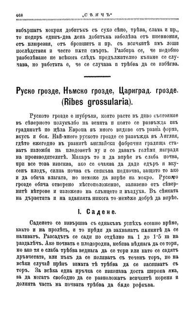 Руско грозде, Немско грозде, Цариград. грозде (Ribes grossularia)