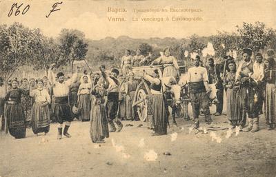 Варна. Гроздобер в Евксиноград