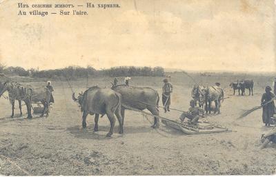 Из селския живот - на хармана