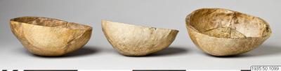 skallskål, kranium, kranieskål, cranium