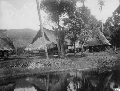 sawahn, byggnad, risfält, hus, risbod, boningshus, fotografi, photograph@eng